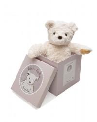 Ragtales Medvedík Darcy v darčekovom balení
